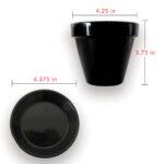 black pot planter succulents